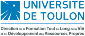 logo Toulouse University