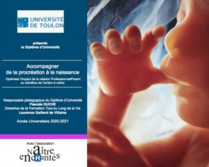 Formation Universitaire (DIU)